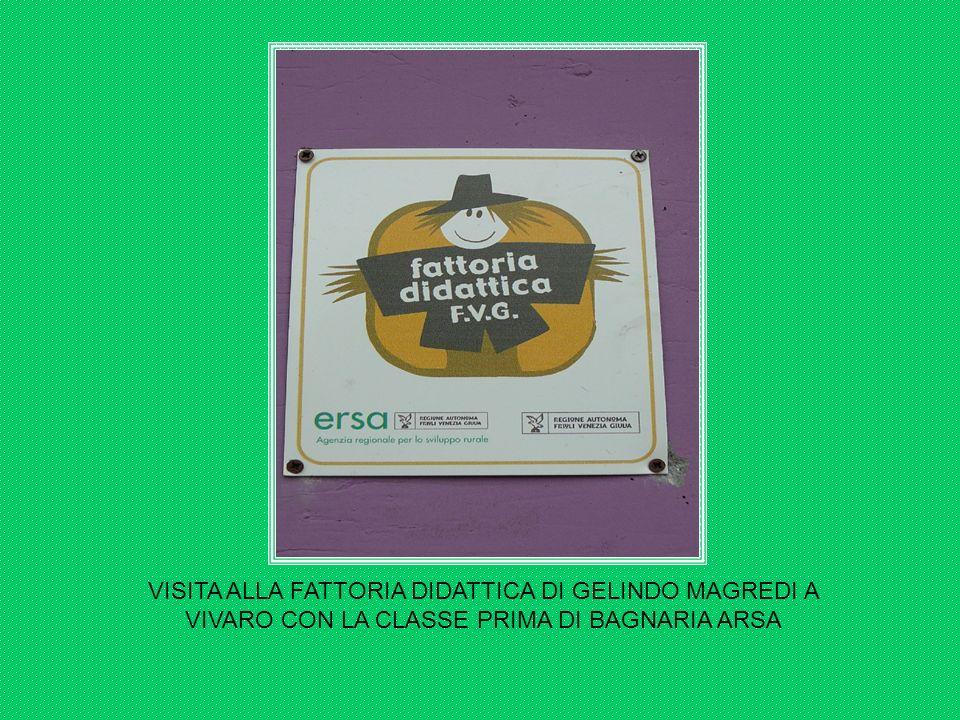 VISITA ALLA FATTORIA DIDATTICA DI GELINDO MAGREDI A VIVARO CON LA CLASSE PRIMA DI BAGNARIA ARSA