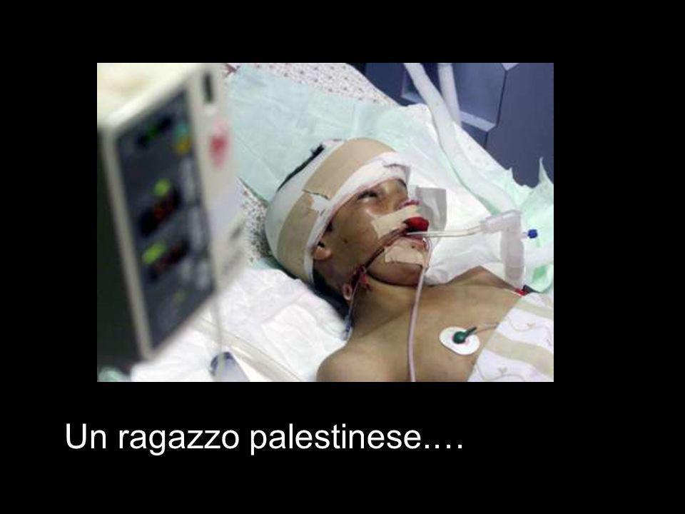 Un ragazzo palestinese.…