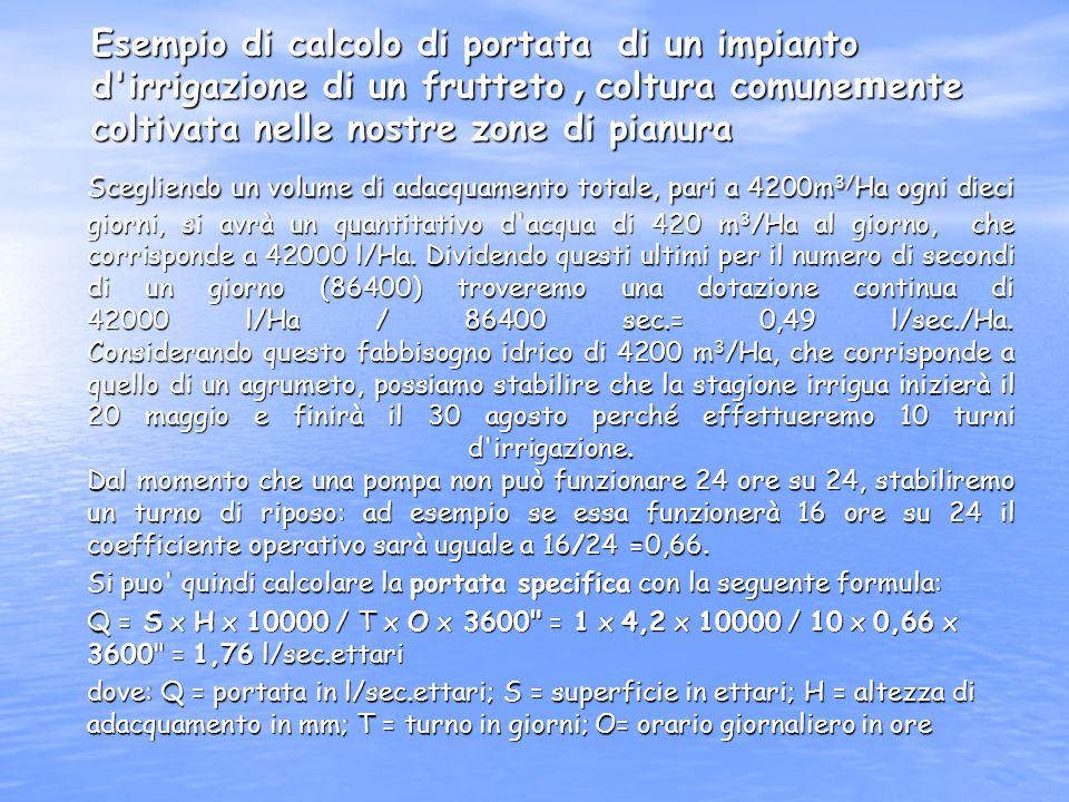Il fabbisogno idrico delle piante Il fabbisogno idrico è strettamente correlato oltre che alla tipologia delle piante considerate, anche al loro rispe