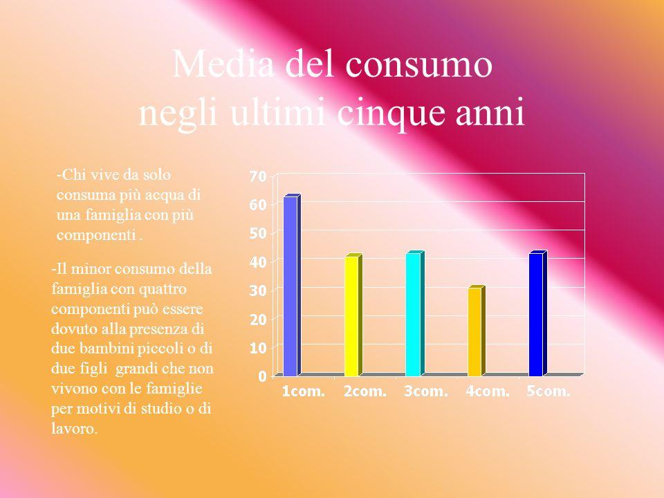 Usi domestici Dati soggettivi e non Dati oggettivi : considerazioni sulla media dei consumi degli ultimi 5 anni a SantAngelo in Pontano. Curiosità su