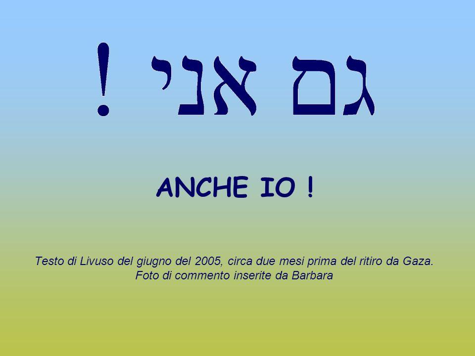 ANCHE IO ! Testo di Livuso del giugno del 2005, circa due mesi prima del ritiro da Gaza. Foto di commento inserite da Barbara