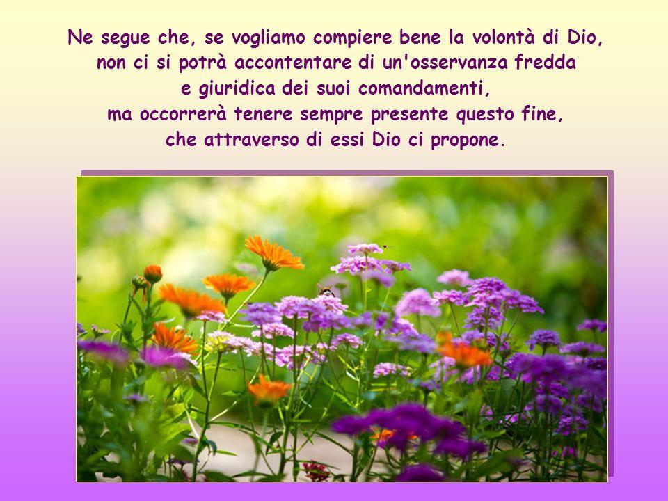 In secondo luogo ci dice che l'amore scambievole è il movente, l'anima e il fine, verso cui tendono tutti i comandamenti.