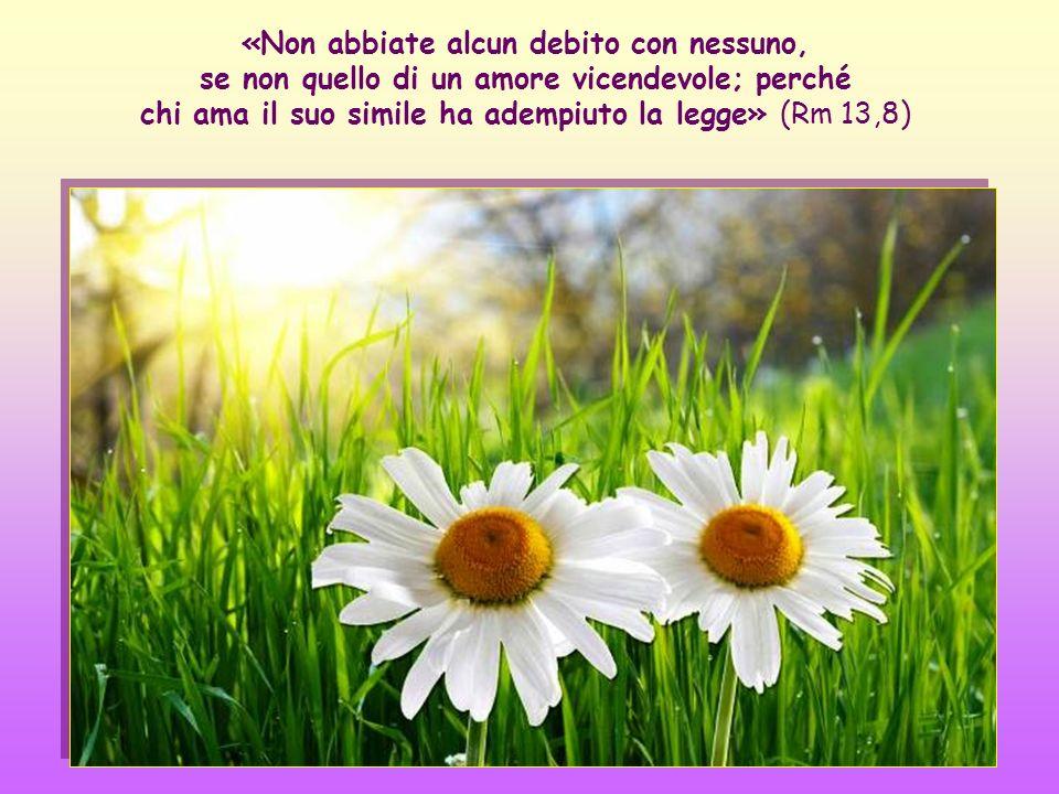 «Non abbiate alcun debito con nessuno, se non quello di un amore vicendevole; perché chi ama il suo simile ha adempiuto la legge» (Rm 13,8)
