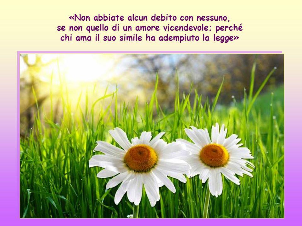 «Non abbiate alcun debito con nessuno, se non quello di un amore vicendevole; perché chi ama il suo simile ha adempiuto la legge»
