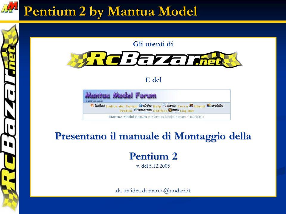 Gli utenti di E del Presentano il manuale di Montaggio della Pentium 2 v.