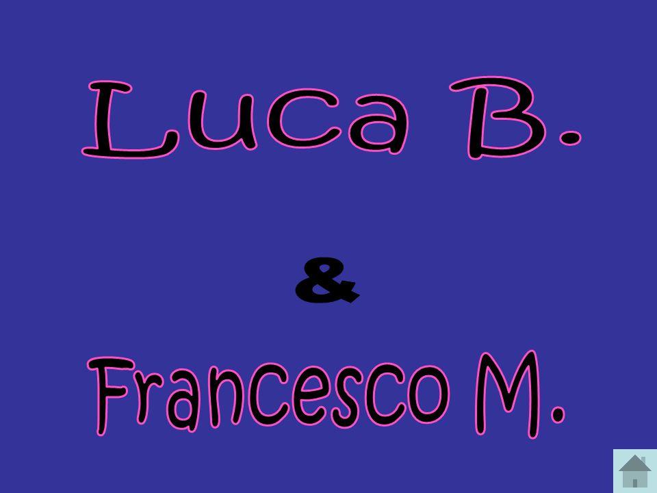 Alessia C. - Rita G. Anna A. - Francesca G. Vanessa B. - Chiara P. Matteo N. Giulia F.- Chiara M. Daniele A. - Lorenzo S. Serena G. - Elisa M. Luca B.