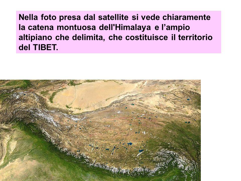 Nella foto presa dal satellite si vede chiaramente la catena montuosa dell'Himalaya e lampio altipiano che delimita, che costituisce il territorio del