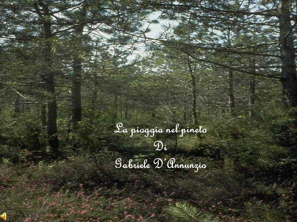 La pioggia nel pineto Di Gabriele DAnnunzio