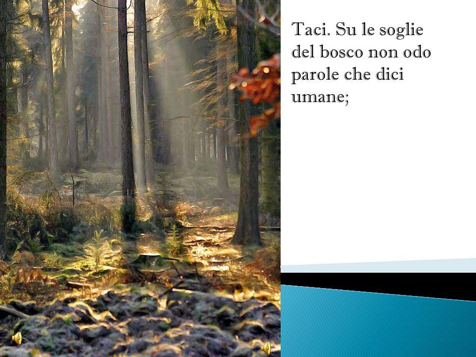 Taci. Su le soglie del bosco non odo parole che dici umane;