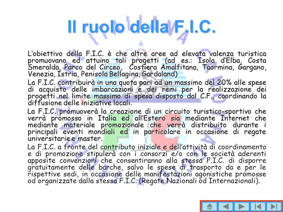 Il ruolo della F.I.C.Lobiettivo della F.I.C.