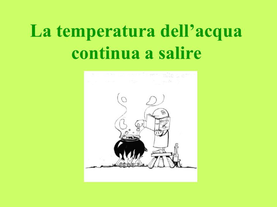 Ora lacqua è calda, più di quanto la ranocchia possa apprezzare, si sente un po affaticata, ma ciò nonostante non si spaventa