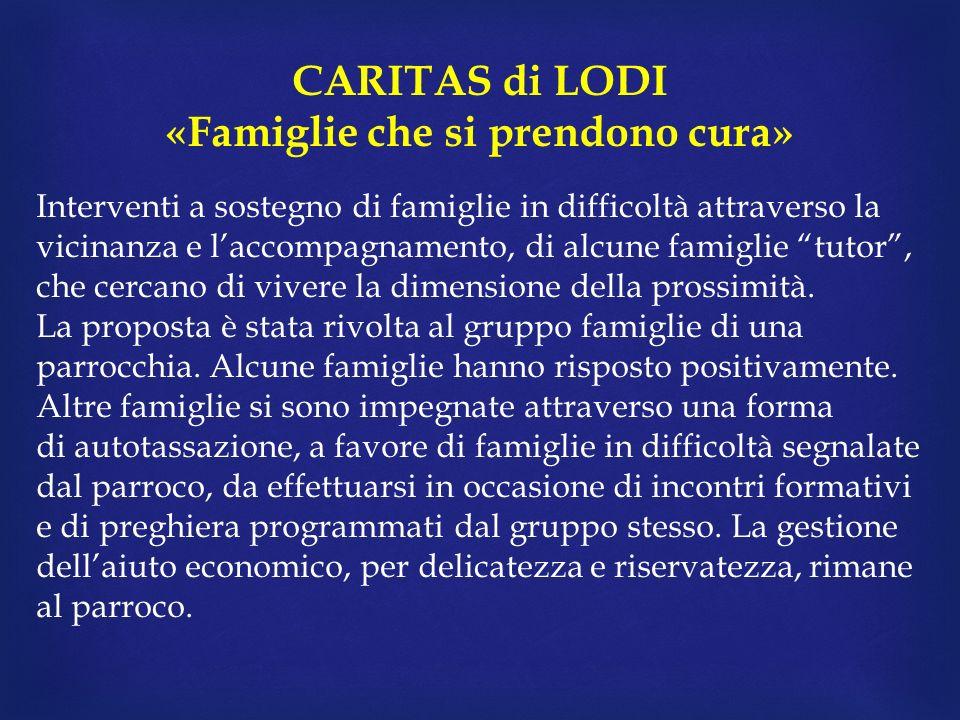 CARITAS di LODI «Famiglie che si prendono cura» Interventi a sostegno di famiglie in difficoltà attraverso la vicinanza e laccompagnamento, di alcune