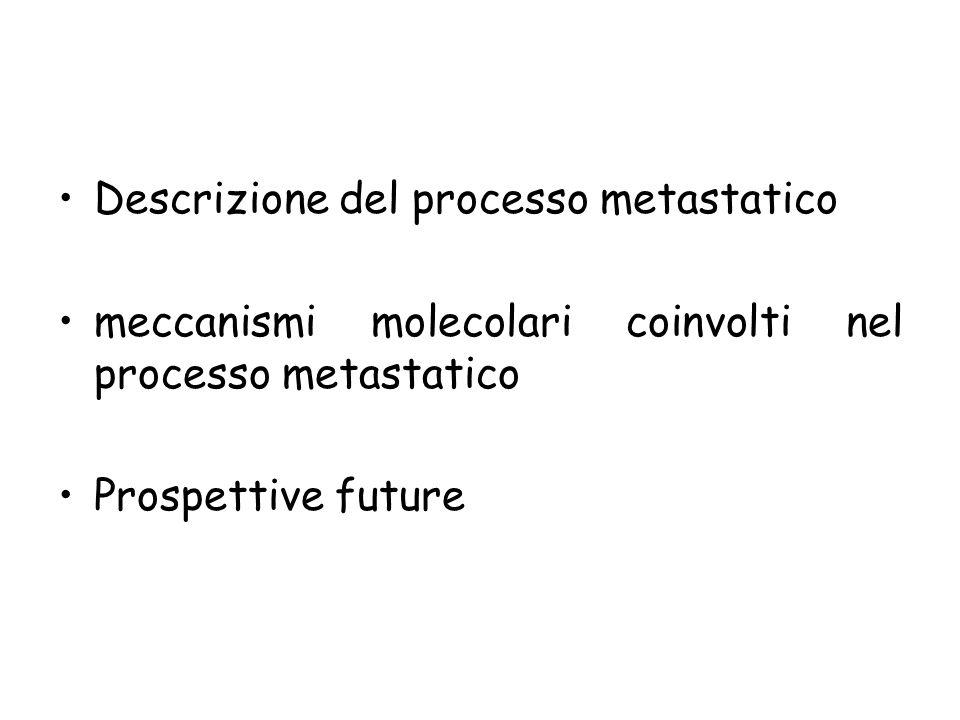 Descrizione del processo metastatico meccanismi molecolari coinvolti nel processo metastatico Prospettive future