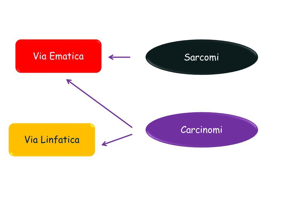 Via Ematica Carcinomi Via Linfatica Sarcomi
