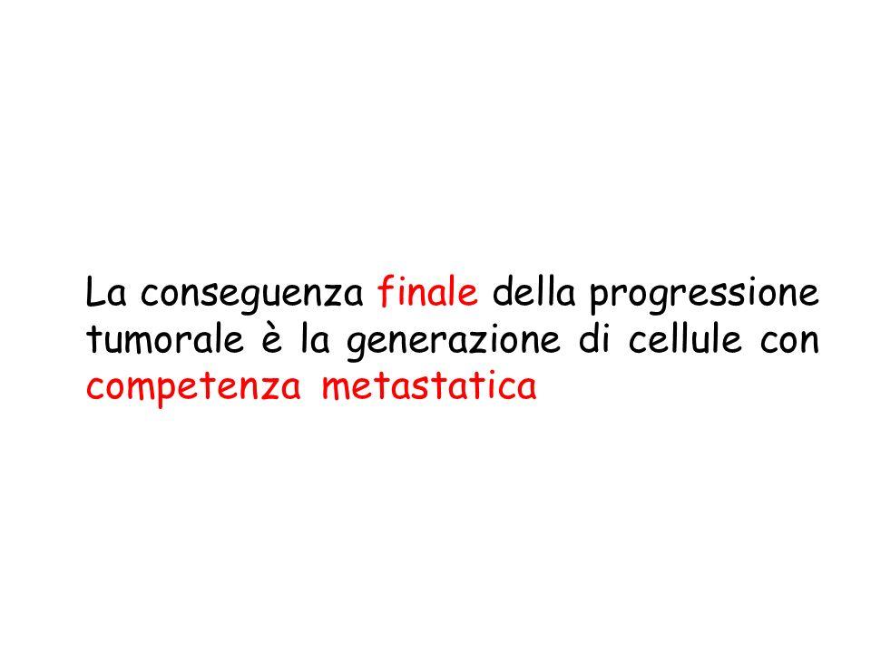 Principali modalità di metastatizzazione Disseminazione vascolare LinfaticaEmatica