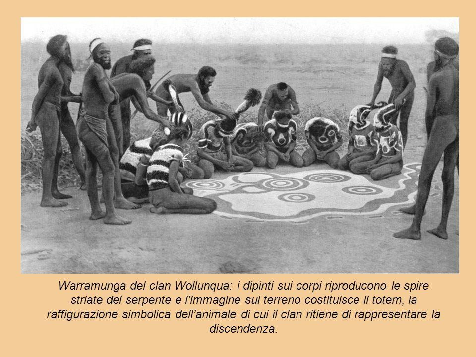 Warramunga del clan Wollunqua: i dipinti sui corpi riproducono le spire striate del serpente e limmagine sul terreno costituisce il totem, la raffigur