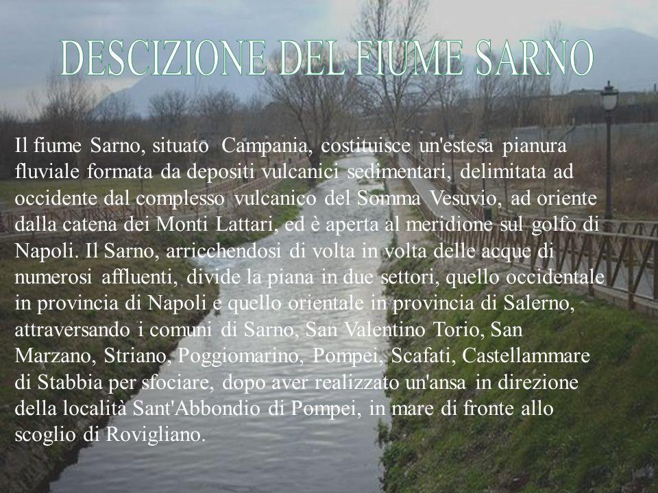 Uno dei problemi principali del fiume Sarno è l inquinamento delle sue acque, per questo negli ultimi tempi il fiume è stato molto studiato.