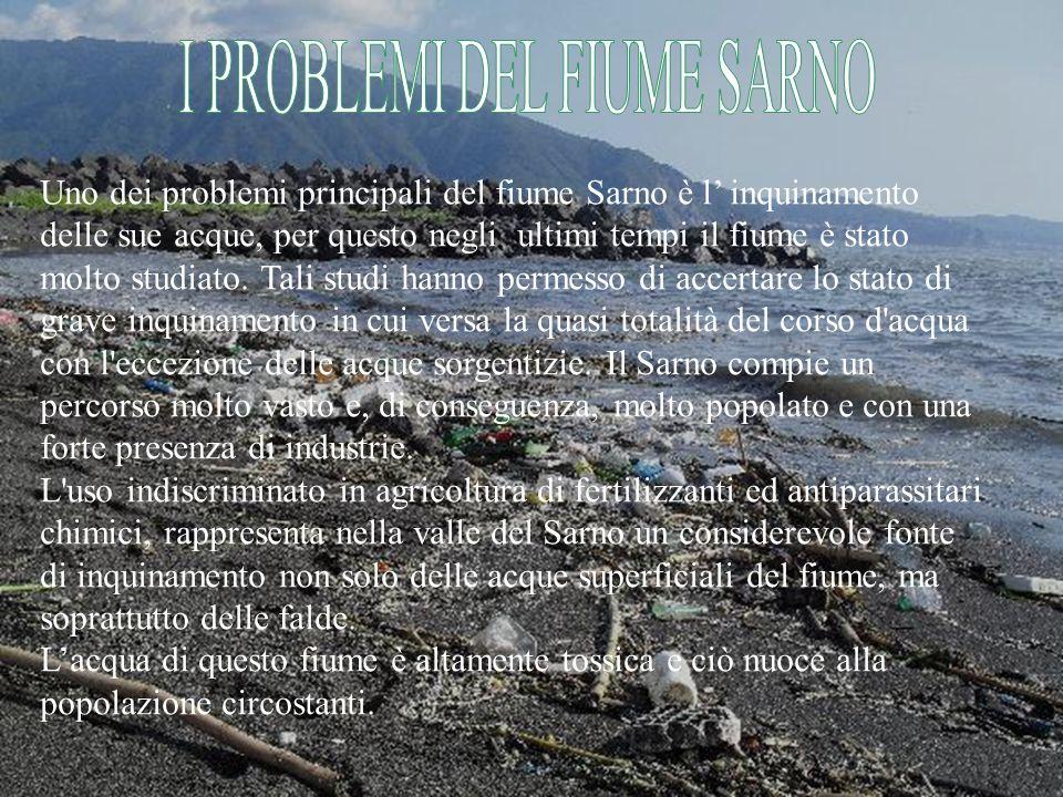 Ci sono numerose associazioni contro l inquinamento delle acque del fiume Sarno.