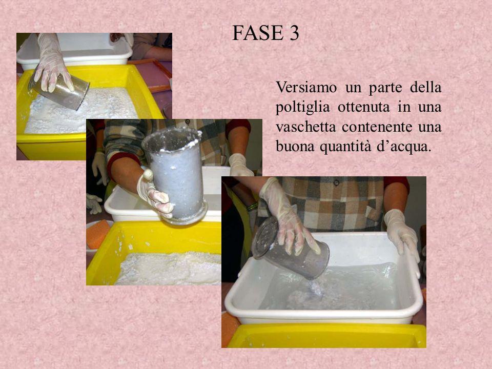 Versiamo un parte della poltiglia ottenuta in una vaschetta contenente una buona quantità dacqua. FASE 3