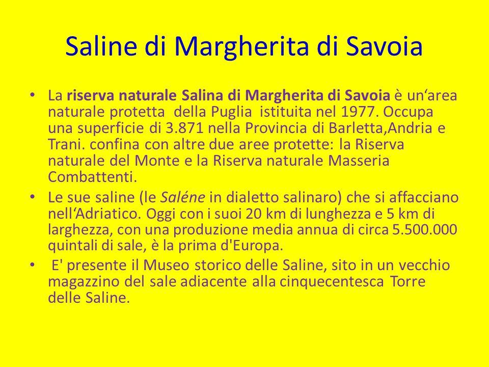 Saline di Margherita di Savoia La riserva naturale Salina di Margherita di Savoia è unarea naturale protetta della Puglia istituita nel 1977.