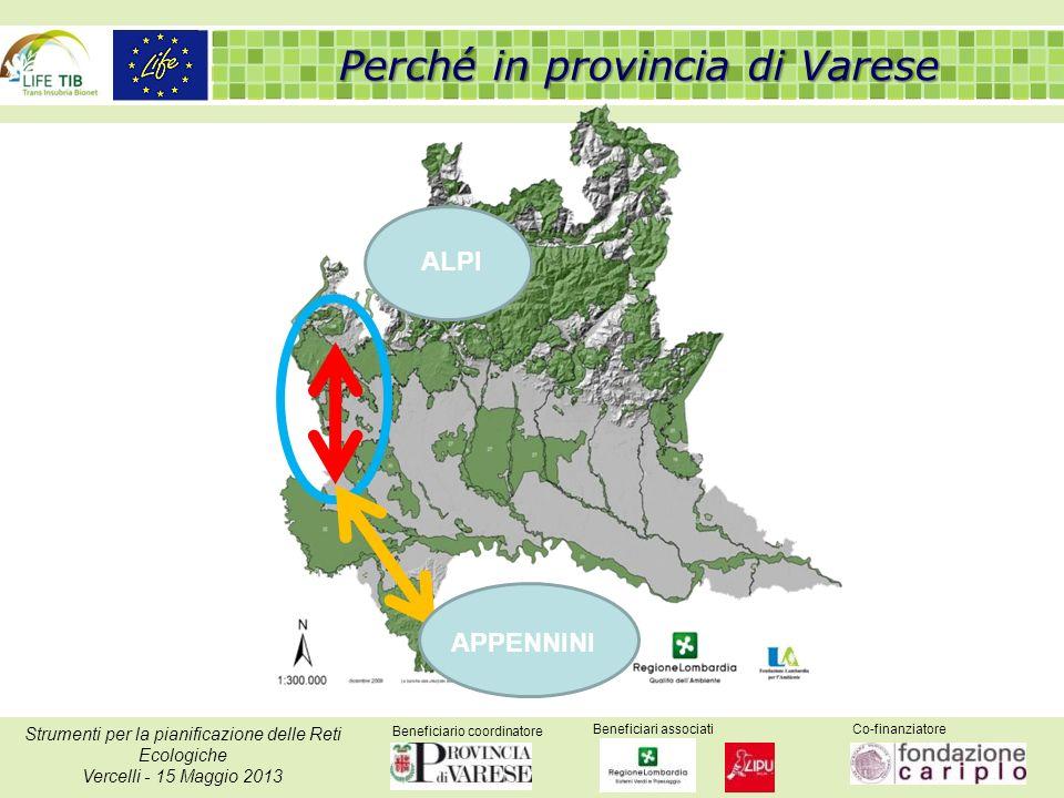 Beneficiario coordinatore Beneficiari associatiCo-finanziatore Strumenti per la pianificazione delle Reti Ecologiche Vercelli - 15 Maggio 2013 ALPI AP