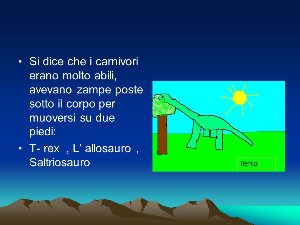 Si dice che i carnivori erano molto abili, avevano zampe poste sotto il corpo per muoversi su due piedi: T- rex, L allosauro, Saltriosauro Ilenia