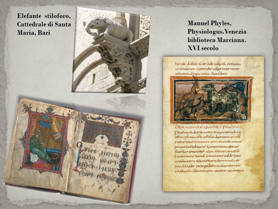 Manuel Phyles, Physiologus.Venezia biblioteca Marciana. XVI secolo Elefante stiloforo, Cattedrale di Santa Maria, Bari