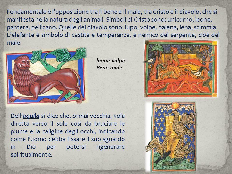 Particolare interesse suscitano le descrizioni di animali fantastici (il drago, il centauro, lunicorno, la sirena.