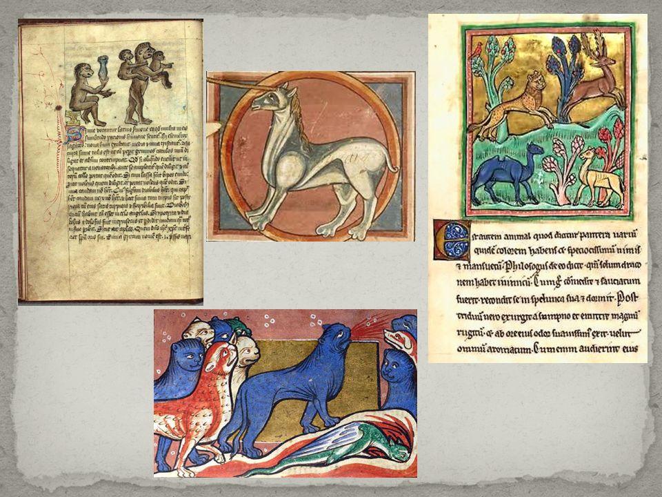 I bestiari tardo - medievali presentano una maggiore complessità, derivata da una lettura allegorica arricchita da altre chiavi interpretative.