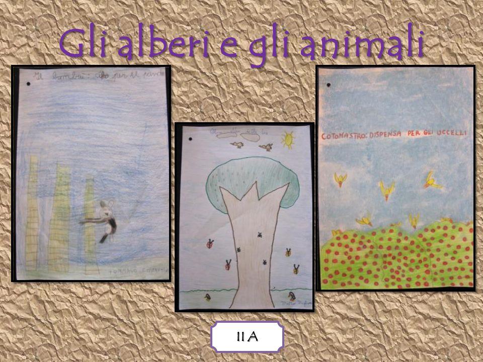 Gli alberi e gli animali II A