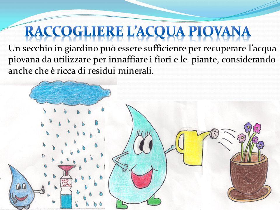 Un secchio in giardino può essere sufficiente per recuperare lacqua piovana da utilizzare per innaffiare i fiori e le piante, considerando anche che è