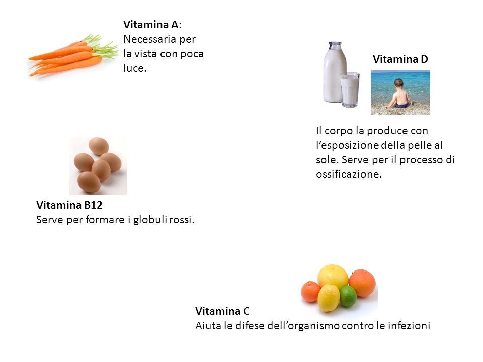 Vitamina A: Necessaria per la vista con poca luce. Vitamina D Il corpo la produce con lesposizione della pelle al sole. Serve per il processo di ossif