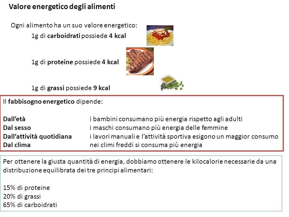 Valore energetico degli alimenti Ogni alimento ha un suo valore energetico: 1g di carboidrati possiede 4 kcal 1g di proteine possiede 4 kcal 1g di gra