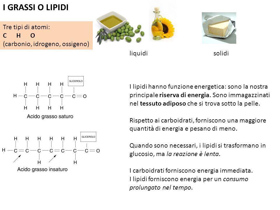 I GRASSI O LIPIDI liquidisolidi Tre tipi di atomi: C H O (carbonio, idrogeno, ossigeno) I lipidi hanno funzione energetica: sono la nostra principale