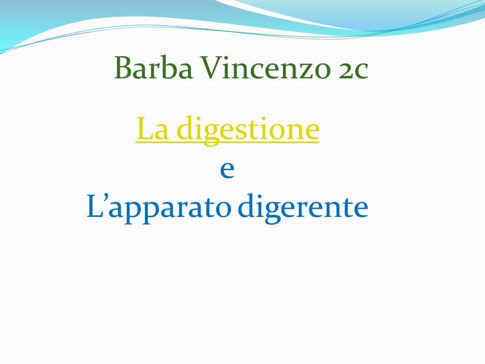 Barba Vincenzo 2c La digestione e Lapparato digerente