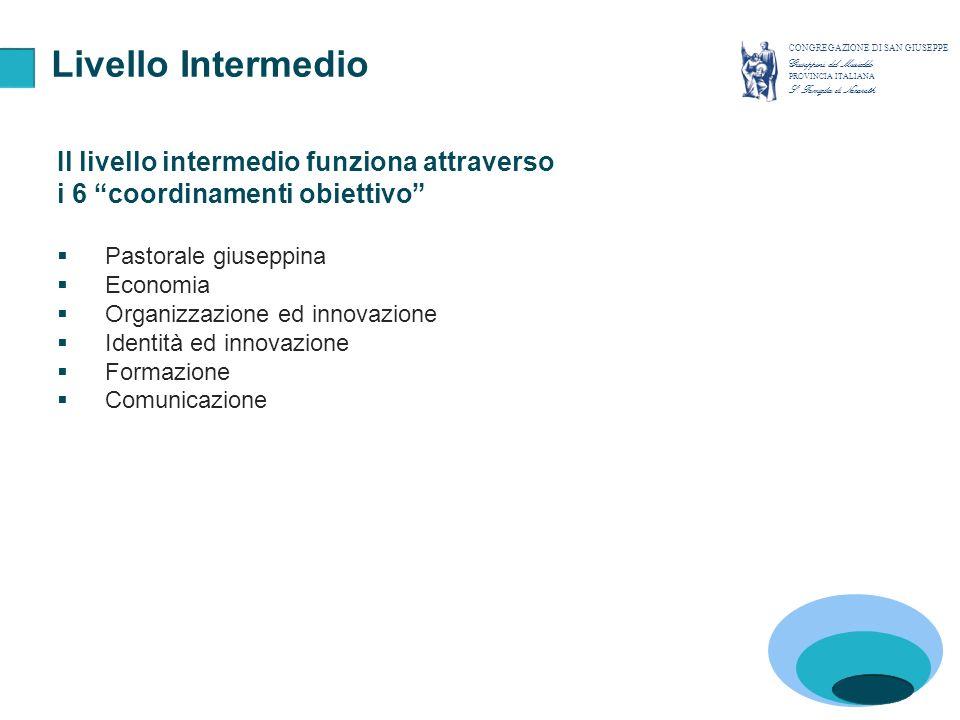 CONSIGLIO PROVINCIALE Pastorale giuseppina Organizzazione ed innovazione Formazione Comunicazione Economia IDENTITA E VOCAZIONE Struttura Identità e Vocazione CONGREGAZIONE DI SAN GIUSEPPE Giuseppini del Murialdo PROVINCIA ITALIANA S.