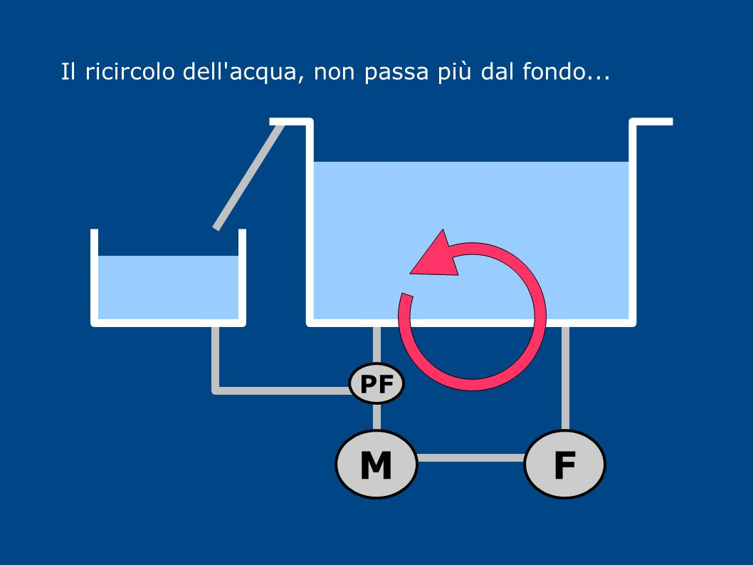Il ricircolo dell'acqua, non passa più dal fondo... MF PF