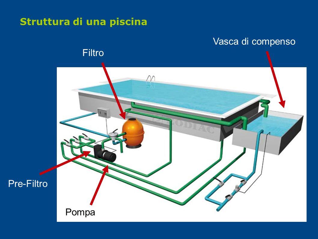 Filtro Pre-Filtro Pompa Struttura di una piscina Vasca di compenso