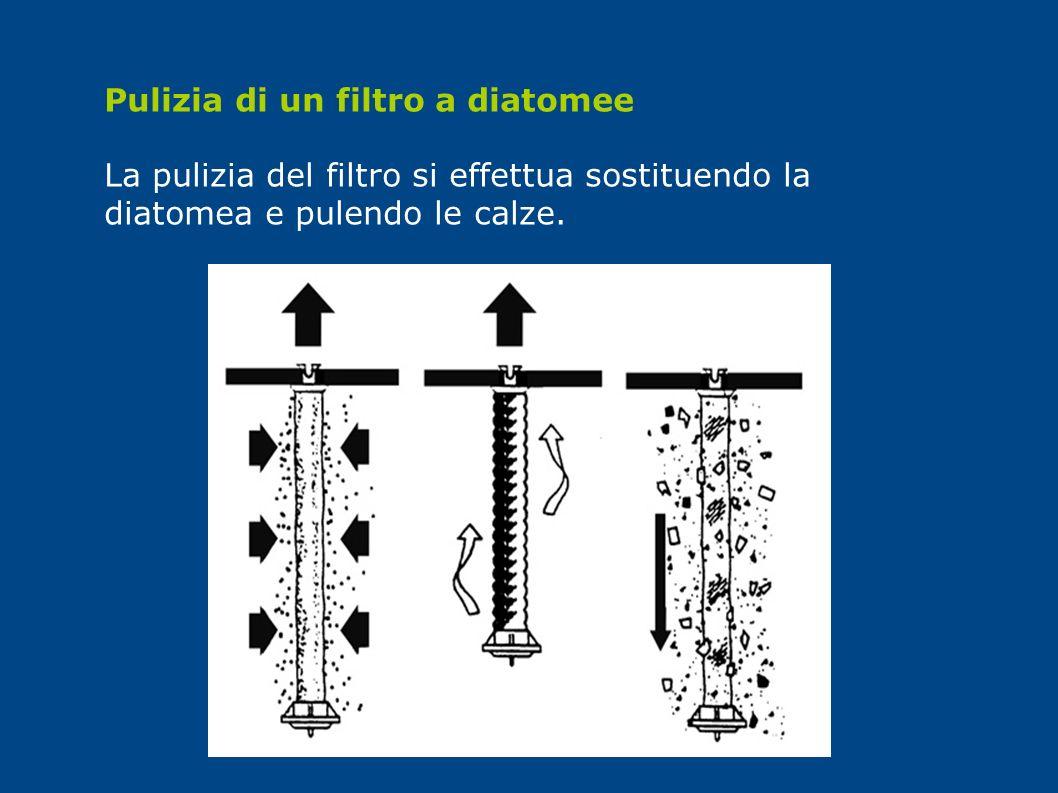 Pulizia di un filtro a diatomee La pulizia del filtro si effettua sostituendo la diatomea e pulendo le calze.