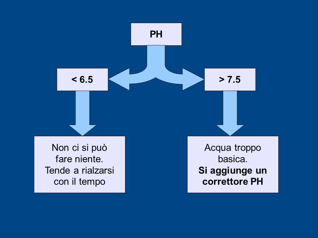 PH > 7.5< 6.5 Non ci si può fare niente. Tende a rialzarsi con il tempo Acqua troppo basica. Si aggiunge un correttore PH