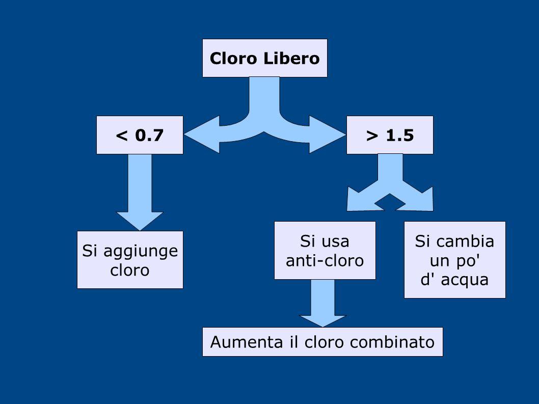 Cloro Libero > 1.5< 0.7 Si aggiunge cloro Si cambia un po' d' acqua Si usa anti-cloro Aumenta il cloro combinato