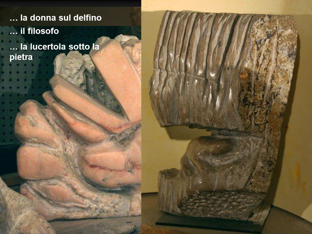 … la donna sul delfino … il filosofo … la lucertola sotto la pietra