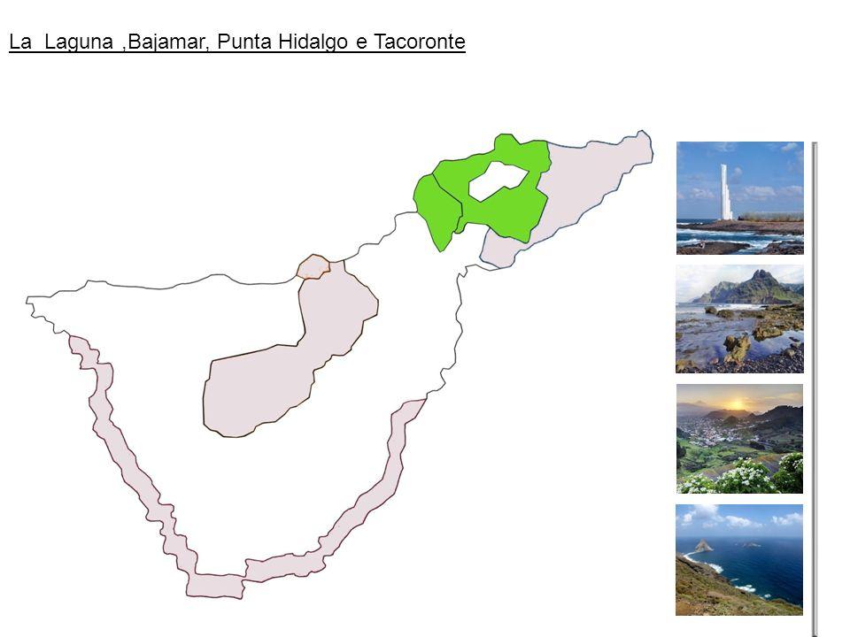 La Laguna,Bajamar, Punta Hidalgo e Tacoronte
