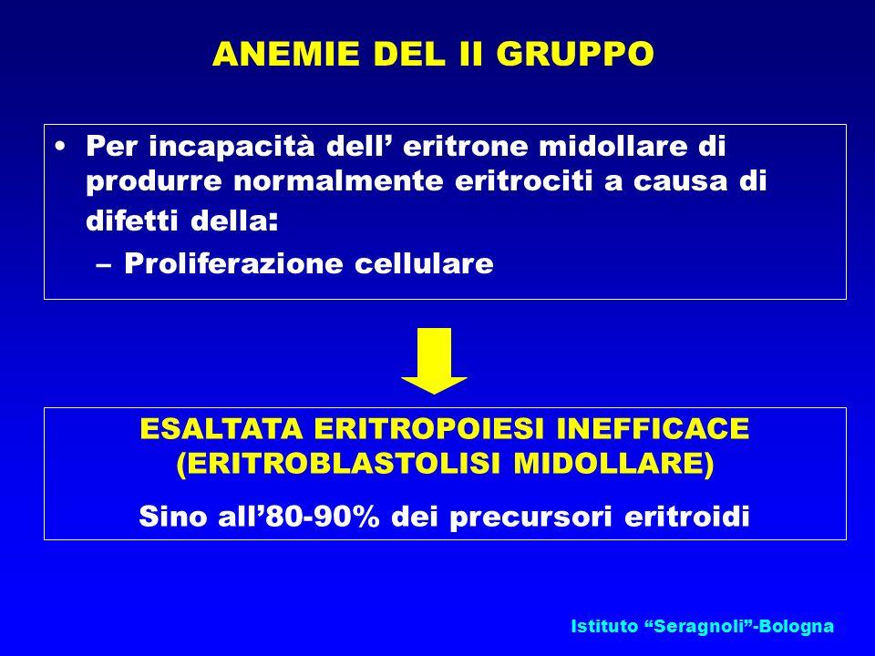 Istituto Seragnoli-Bologna ANEMIE DEL II GRUPPO ESALTATA ERITROPOIESI INEFFICACE (ERITROBLASTOLISI MIDOLLARE) Sino all80-90% dei precursori eritroidi