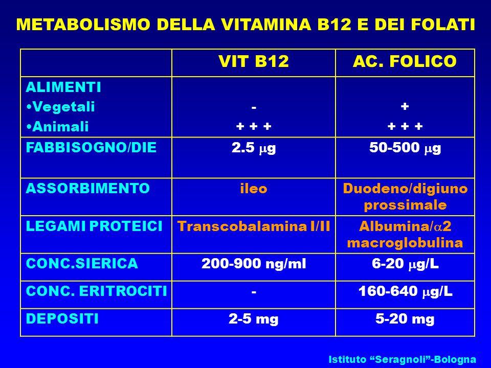 Istituto Seragnoli-Bologna METABOLISMO DELLA VITAMINA B12 E DEI FOLATI VIT B12AC. FOLICO ALIMENTI Vegetali Animali - + + + + + + + FABBISOGNO/DIE2.5 g