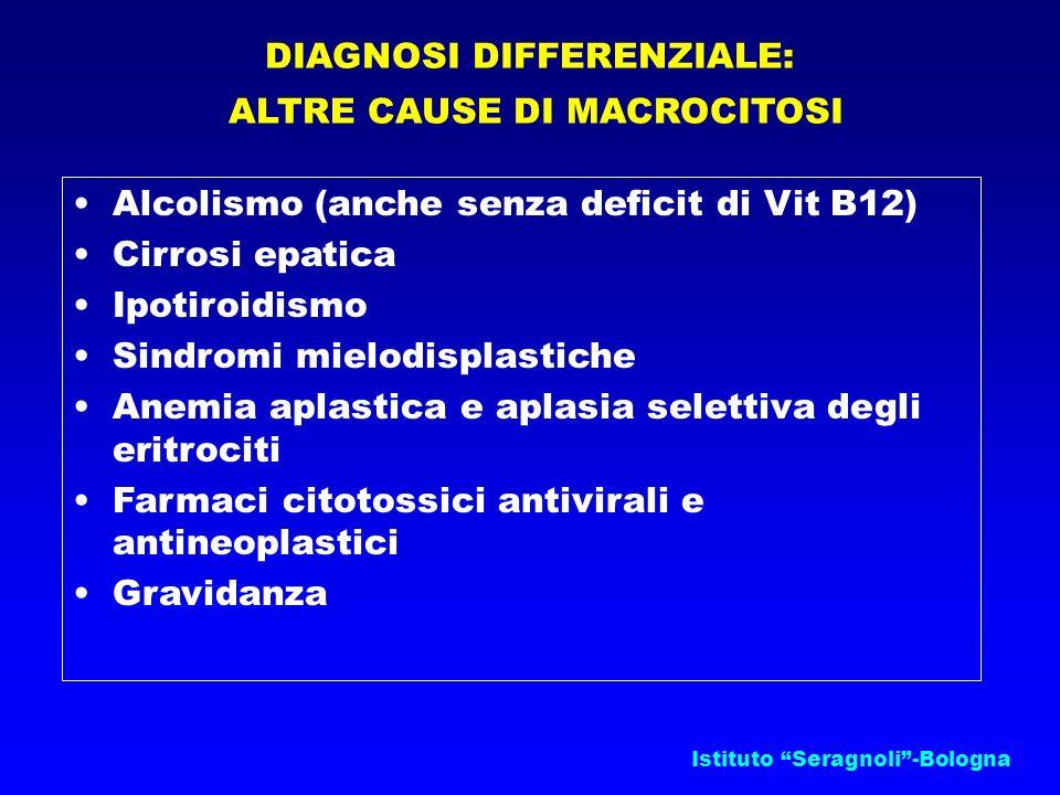Istituto Seragnoli-Bologna DIAGNOSI DIFFERENZIALE: ALTRE CAUSE DI MACROCITOSI Alcolismo (anche senza deficit di Vit B12) Cirrosi epatica Ipotiroidismo