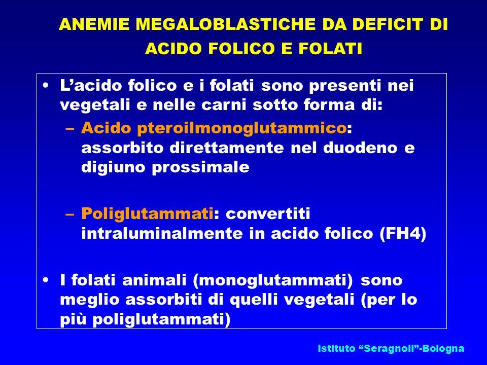 Istituto Seragnoli-Bologna ANEMIE MEGALOBLASTICHE DA DEFICIT DI ACIDO FOLICO E FOLATI Lacido folico e i folati sono presenti nei vegetali e nelle carn