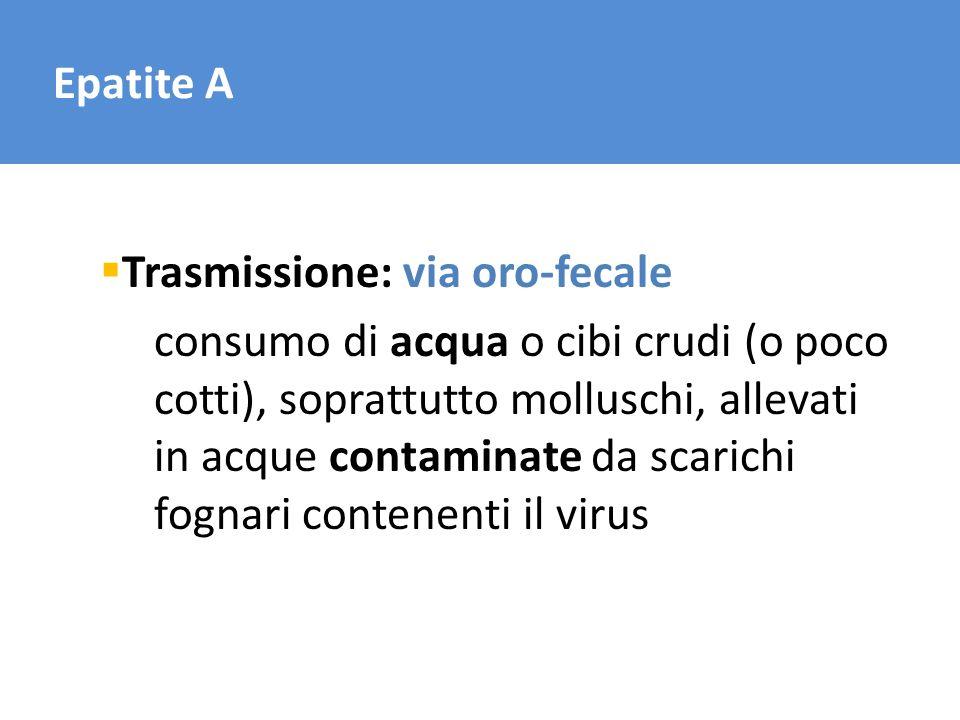 Epatite A Trasmissione: via oro-fecale consumo di acqua o cibi crudi (o poco cotti), soprattutto molluschi, allevati in acque contaminate da scarichi