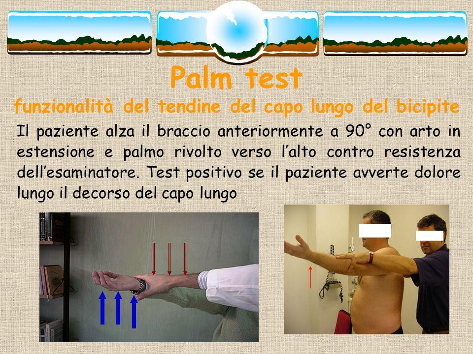 Palm test funzionalità del tendine del capo lungo del bicipite Il paziente alza il braccio anteriormente a 90° con arto in estensione e palmo rivolto