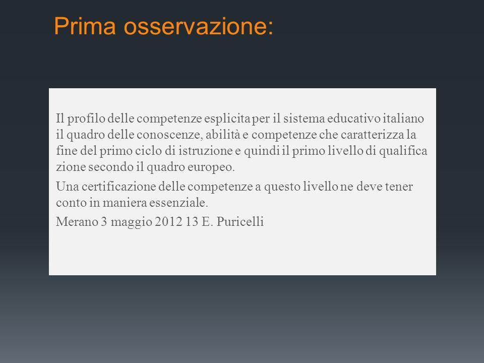Prima osservazione: Il profilo delle competenze esplicita per il sistema educativo italiano il quadro delle conoscenze, abilità e competenze che carat